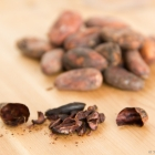 Cacao nibs, the most natural form of chocolate