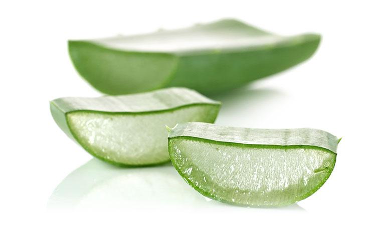 Aloe Vera Juice, the natural remedy – Χυμός Αλόης, το φάρμακο της φύσης